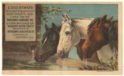 This victorian trade card is available for purchase.  Click on the image for more details.
