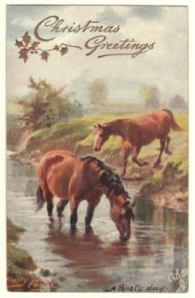 H. Payne Oilette Horse Postcard