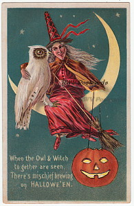 Halloween Postcard - Owl and Witch Together on Moon